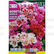 rocalba seminte flor de azalea enana doble 3 g - 1