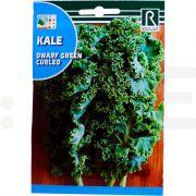 rocalba seminte salata kale pitica 6 g - 1