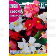 rocalba seminte begonia semperflorens 01 g - 1