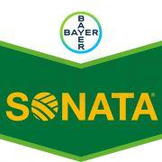 bayer fungicid sonata sc 5 litri - 1