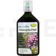 schacht ingrasamant evergreen fluid 350 ml - 1