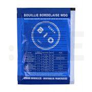 cerexagri fungicid bouille bordelaise wdg zeama bordeleza punga 50 g - 1